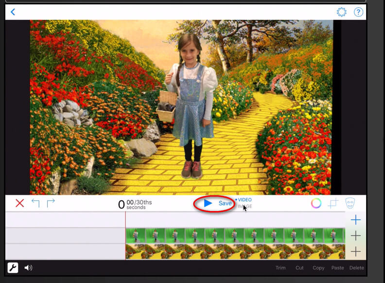 Top 5 Best Green Screen Apps for 2019 – Make a Video Hub